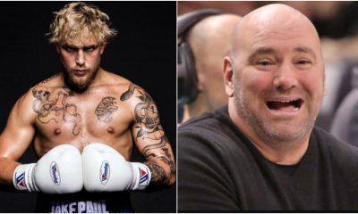 Jake Paul Dana White boxning UFC MMA Frontkick Online