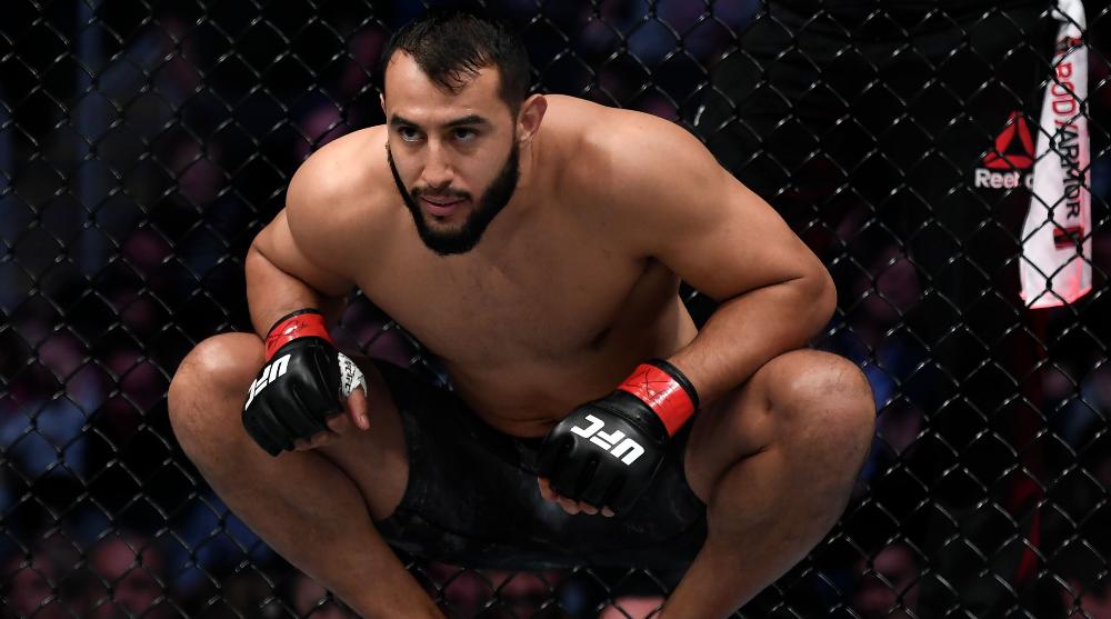 Dominick Reyes Jiri Prochazka UFC MMA Frontkick Online