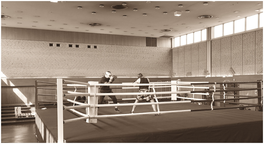 Liridon Nuha MMA Frontkick.online boxning