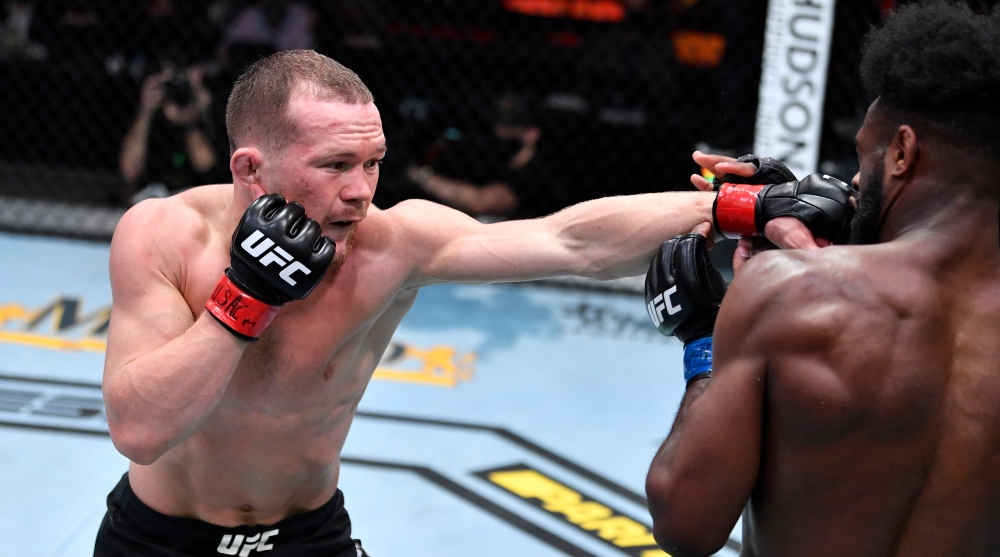 Petr Yan Aljamain Sterling UFC Frontkick Online