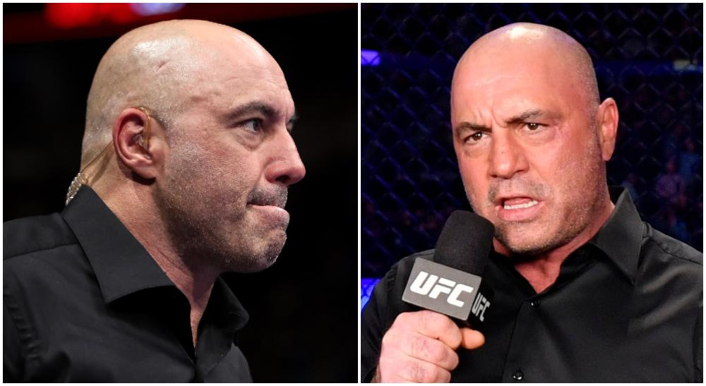 Joe Rogan Kritik Artem Lobov Conor McGregor UFC MMA Frontkick Online