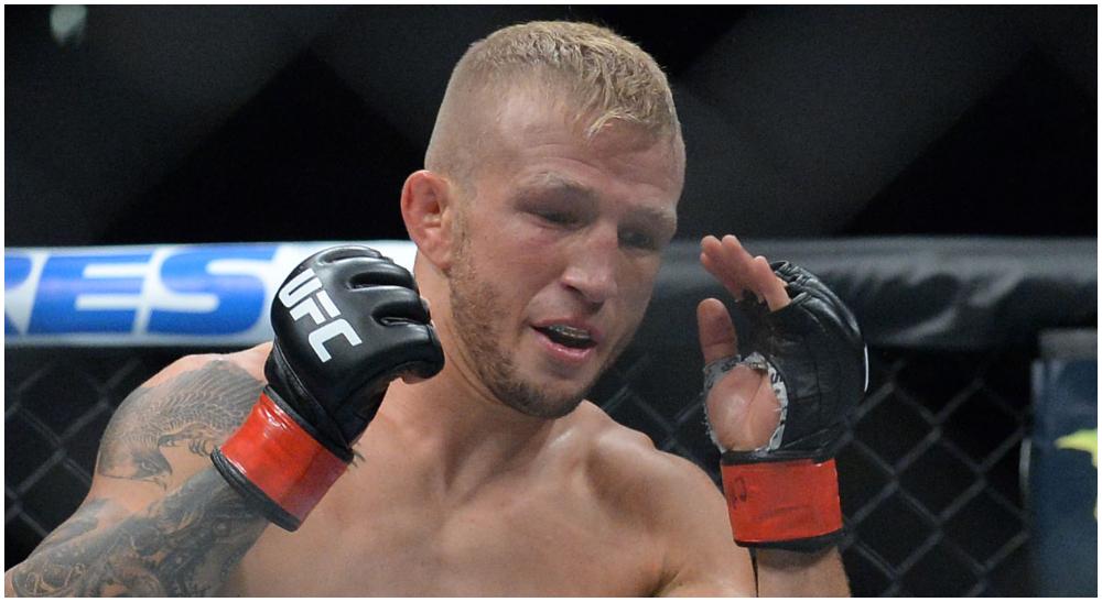 TJ Dillashaw MMA Frontkick.online