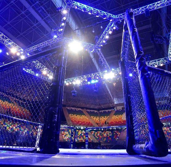 MMA Frontkick.online
