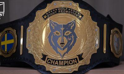 Wolf Fight Promotion 3 Frontkick.online